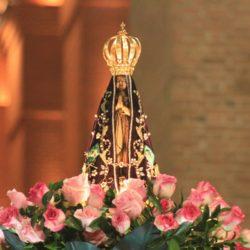 Brumadinho: oratório de Nossa Senhora Aparecida intacto